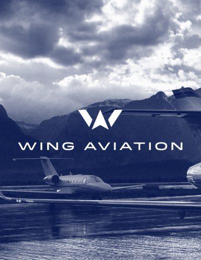 wing_hero